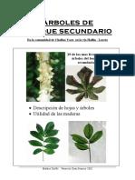 Ecuador Trees (Flora)