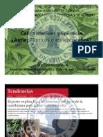 Cannabidiol y Epilepsia Dra. Manterola