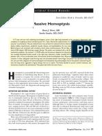 hp_may06_massive.pdf