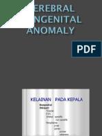 3 kelainan kongenital.ppt