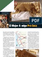 momias caninas.pdf
