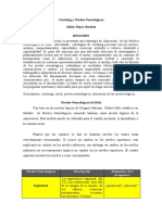 Cauching y Niveles Neurolocc81gicos Sicc81ntesis Para El Blog