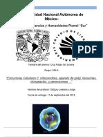 Portada (Estructuras Celulares I).docx