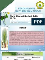 Bab 1 Pendahuluan Botani Tumbuhan Tinggi (BTT)