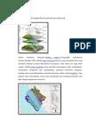 Aplikasi Dari Gis Dalam Dunia Geologi