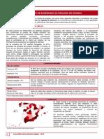 Profesores_Ensenanza_no_reglada_de_idiomas.pdf