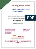 Shruti Project Panjab National Bank