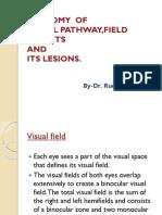 anatomyofvisualpathwayfielddefectsanditslesions-130707060730-phpapp02
