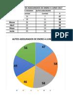 Porcentaje de autos asegurados.xlsx