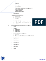 Anatomy of Kidney and Nephron Human Anatomy and Physiology Lecture Notes