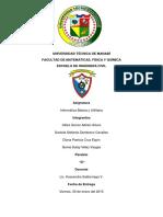 Proyecto Ciclo Completo Informatica.docx