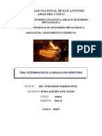 UNIVERSIDAD NACIONAL DE SAN ANTONIO.docx