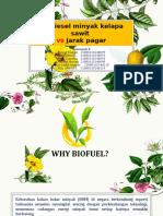 PPT BIODIESEL 8.pptx