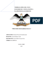 habeas-data.docx