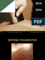 Enviando Gua sha.pdf
