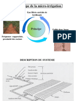 56381551-Principe-de-La-Micro-Irrigation.ppt