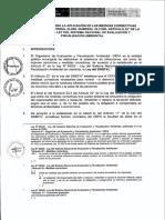 Lineamientos-aprobado.pdf