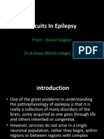 Circuits In Epilepsy (1).pptx