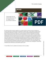 comunicacion precisa de color_espanol.pdf