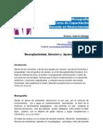 Neuroplasticidad , Atencion y Aprendizaje