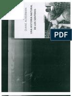 ACKERMAN_El ojo del espectador.pdf