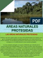 Areas Naturales Protgedias del Peru