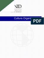 Cultura Organizacional Pte 12