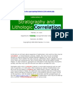 Stratigraphy & Lithology Correlation