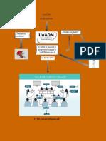 UnADM Derecho Infograma S7