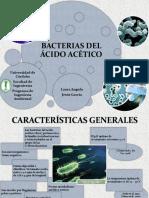 Bacterias Del Ácido Acético