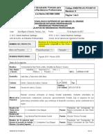 (SNEST_D-AC-PO-007-01)_FORMATO_PARA_SOLICITUDES_DE_RESIDENCIAS_PROFESIONALES - copia.doc