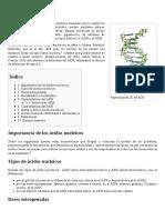 Ácido_nucleico (1)