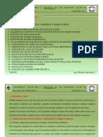 Puentes Cap VII.pdf