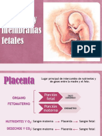 Clase5a.PlacentayMembranas (1)