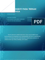 PERSENTATION SISTEM DIGESTI PADA TERNAK RUMINANSIA.pptx