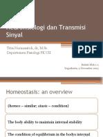 11 Neurofisiologi-2015.pptx