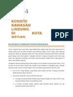 Kondisi Kawasan Lindung di Kota Medan