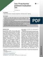 padegimas2015.pdf