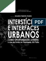 EDUARDO PIZARRO Intersticios Urbanos