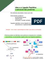 Aminoácidos e Peptídeos40