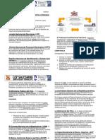 ORGANISMOS CONSTITUCIONALMENTE AUTONOMOS.docx