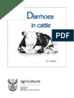 Diarrhoea Cattle