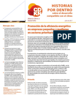 Promoción de la eficiencia energética en empresas pequeñas y medianas en sectores prioritarios en Perú