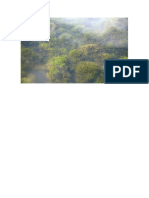 PLANTAS  CLASIFICCION.docx