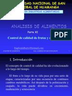 X CONTROL DE CALIDAD DE FRUTAS Y DERIVADOS.ppt