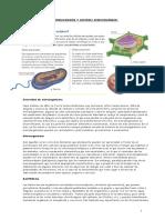 microorganismos septimo