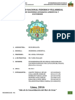 Fitorremediacion Girasol Microbiologia Final