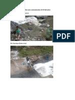 Trabajo de El medio Ambiente de El Salvador