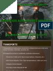 73807737-SERVICIOS-AUXILIARES-MINEROS.pdf