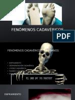 FENÓMENOS CADAVÉRICOS.pptx
